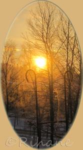 morgonsol i februari